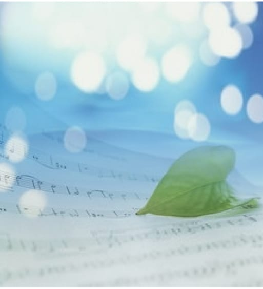 Green leaf on sheet music
